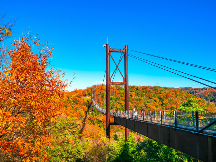 人が歩いて渡る木製床板の吊り橋としては国内最大級の「星のブランコ」