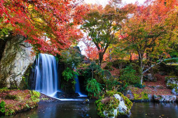 日本庭園の中に耶馬溪のダイナミックな自然美が再現された「溪石園」