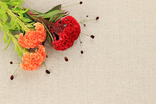 「知って得する季語」──地味だけどかわいい秋の季語