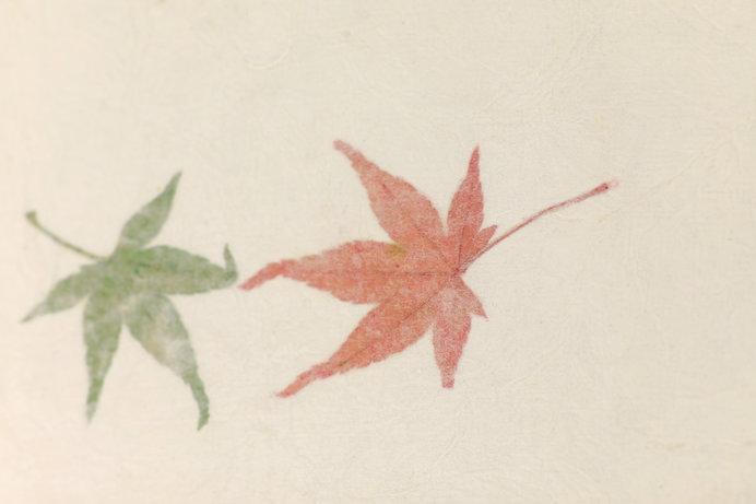 国の伝統工芸品にいちはやく指定された因州和紙 ※画像はイメージ