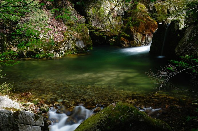 清流、苔むす岩々、色づく木々……と、魅力いっぱいの「小鹿渓」