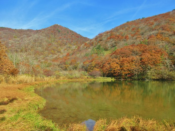 見事な紅葉が広がる「三瓶山」の室内池の景観