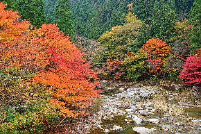 紅葉した自然豊かな「奥津渓」