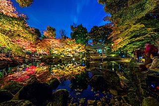 東京の紅葉を満喫しよう♪自然豊かでスタイリッシュな都会の紅葉名所4選
