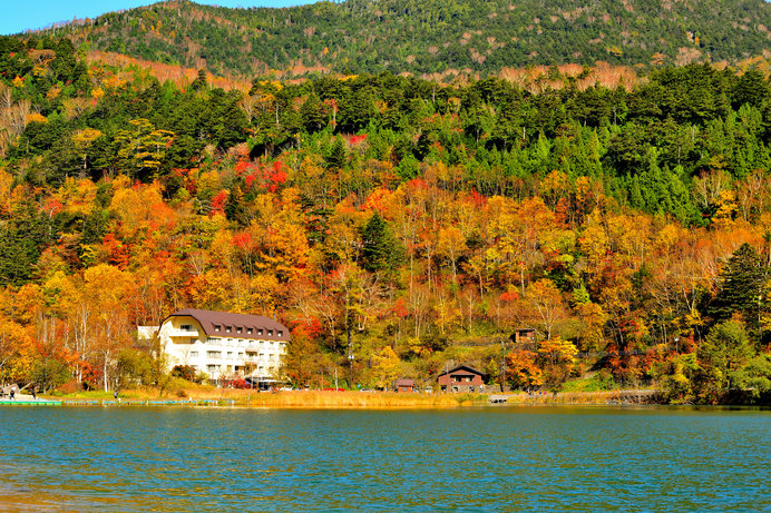 秋の湖畔では、色づく樹々を眺めてリラックスしたい