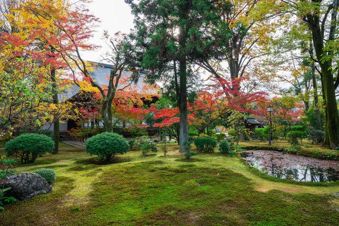 京都・広隆寺の紅葉