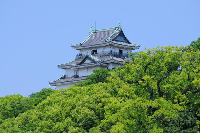吉宗が生まれた紀州徳川家の居城、和歌山城
