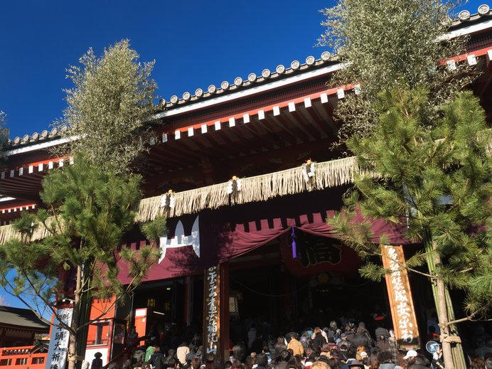 削ぎ切りではなく葉つきの竹を使用した巨大門松