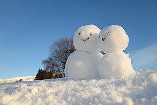 冬を楽しもう!!「雪と氷のイベント」東北/2020