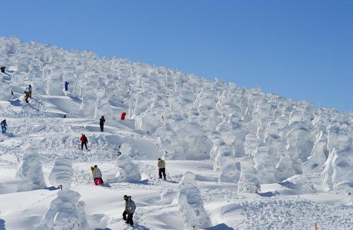 蔵王 樹氷 2020