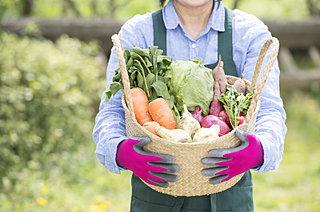 ダーウィンの日に考える、野菜の「種」のこと