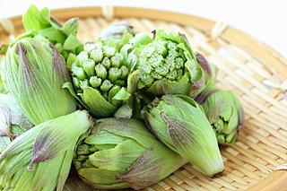 食卓にほろ苦い春の息吹を。2月10日は「蕗の薹の日」です