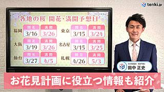 【動画で解説】記録的な早さの桜開花!満開までの期間は?お花見計画に役立つ情報も紹介
