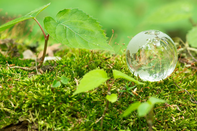 アースデーは地球環境について考えよう!未来のためにできること
