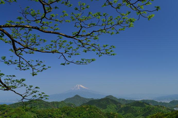 「かさねの色目」に見る、日本古来の豊かな色彩