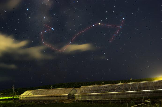 さそり座で赤く輝くのは一等星のアンタレス (写真はイメージです)