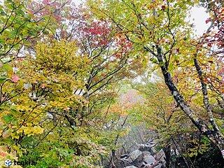 山は紅葉シーズン真っただ中! コロナ禍での登山装備は? 登山アプリを上手に使って紅葉狩りに行こう