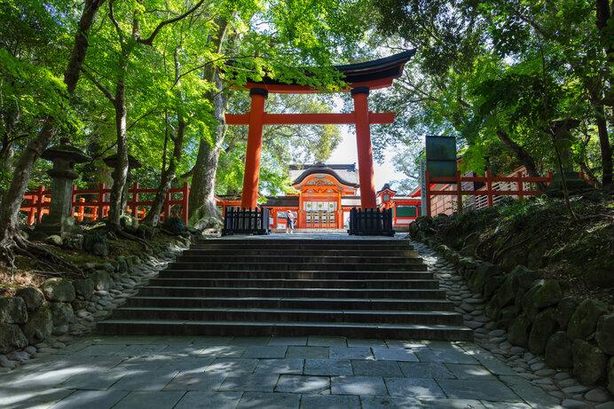 日本一多い!八幡神社にまつられる「八幡さま」は、どんな神さま?