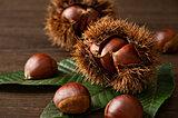 「和栗」は、まさに今が旬!品種を知って、味わいの違いを楽しもう