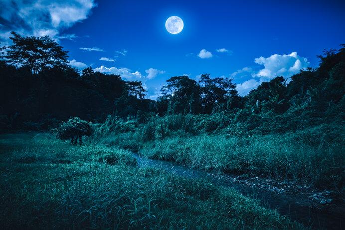 ブルームーンは青くない!? 月の色が変わるのはなぜ?