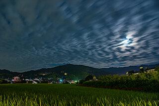 お月見は3回ある?日本版のハロウィン「十日夜」をご存知ですか?