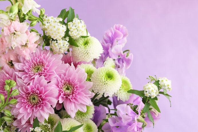 秋の花を、今を、心だけでなく留めておこう。その方法は?