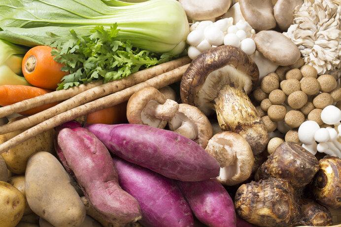 秋野菜集合