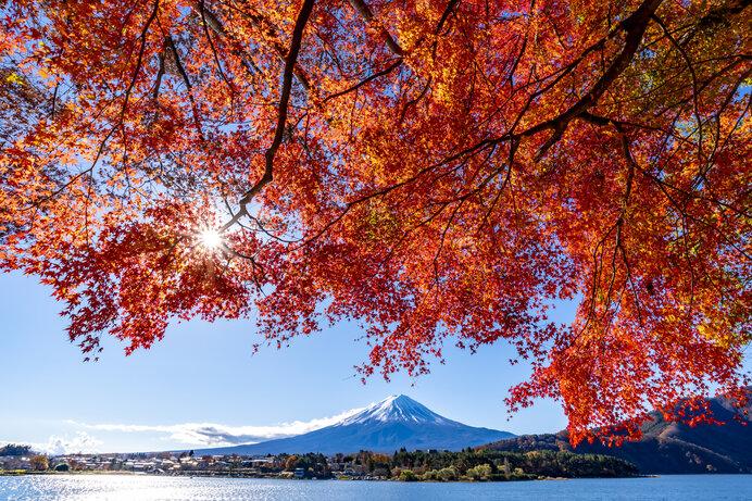 秋の味覚、11月の旬を楽しもう。定番を超えたサバサンドに挑戦!_画像