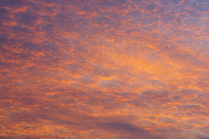 今、見上げる空の色も秋のもの
