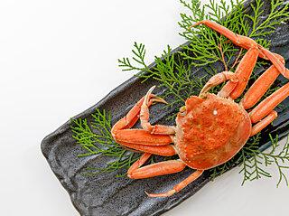 ジビエ、蟹、ワイン。11月は「解禁日」がめじろ押し!期間限定の食を愉しみましょう