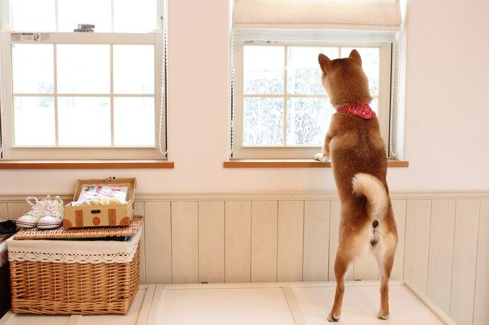 風呂あがりにアイスは、北海道の真冬の常識!?