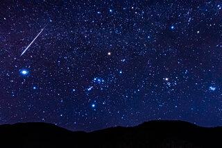 12月14日にふたご座流星群が極大!ところで、どんな双子さん?