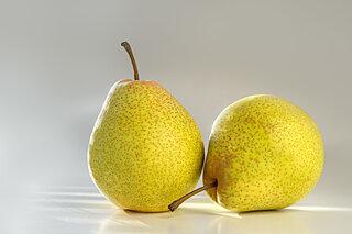 北海道特産の「千両梨」が冬でも食べられる!?
