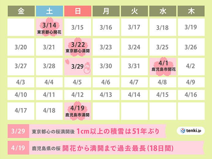 10位 桜前線東京からスタート 休眠打破が進まず鹿児島の見頃は4月下旬に(3月~4月)