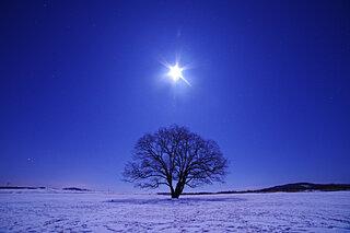 春秋を超える美しさ。風雅の人を魅了した冬の月と雪~平安文学に見られる冬の夜~《後編》