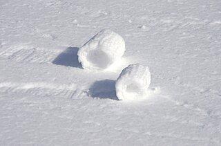 雪原にロールケーキ? 風で転がる「雪まくり」