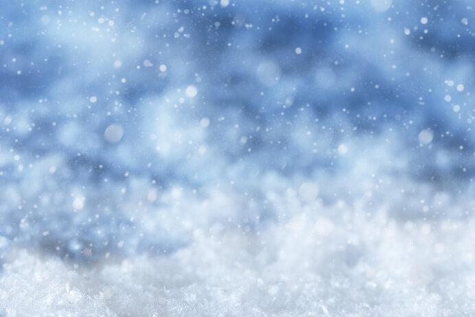 白い雪の美しさに親しむ~平安文学に見られる雪~(前編)