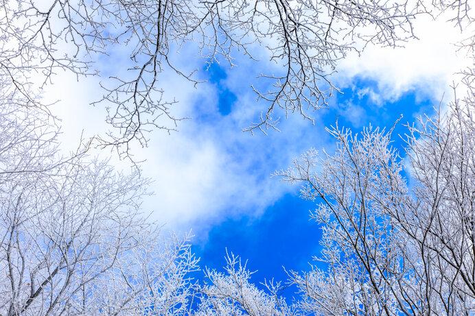 万葉集の雪―豊作の前兆