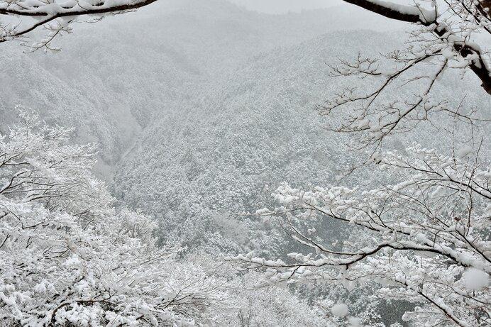平安和歌の雪―吉野山、人を隔て、花に喩える