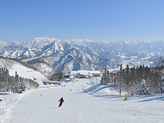 安心してスキーを楽しむための工夫をしているスキー場【北陸エリア編】