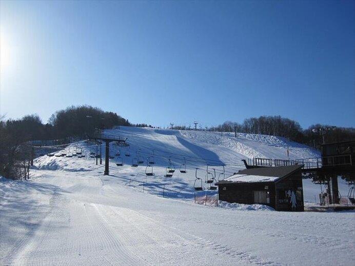 2kmの雄大な初心者向け林間コース!スノーパークも常設/湯殿山スキー場(山形県鶴岡市)
