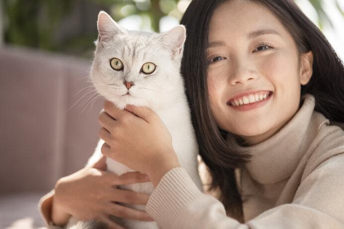 記念すべき猫の日を祝うべく、猫について学びを深めましょう。
