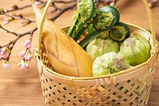春野菜で野生に目覚めよう!抵抗力を活性化させる春の苦味を食すとは?