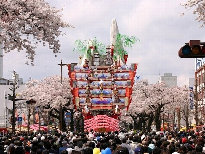 「日本さくら名所100選」に選ばれた伝統の桜道/平和通りの桜(茨城県日立市)