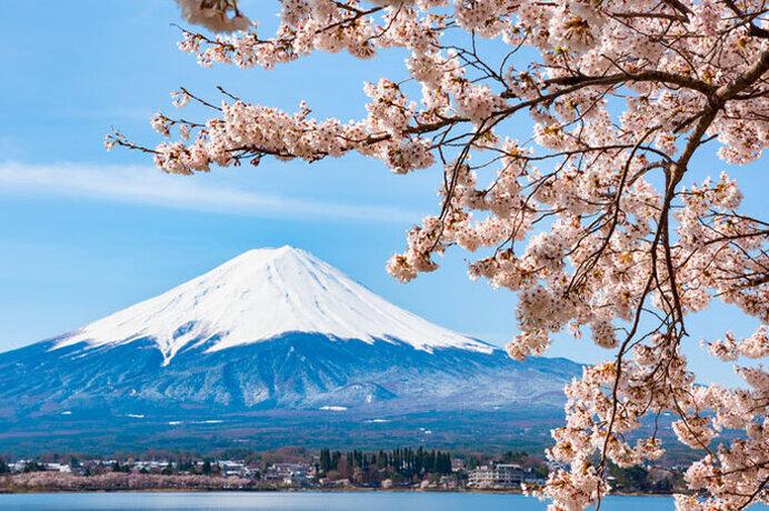 甲信エリアの桜名所〜密を避けて2021年のサクラを楽しもう〜