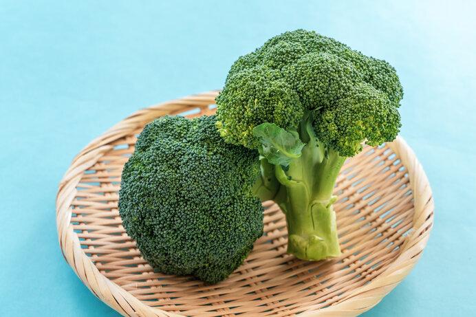 本日のメインお野菜<ブロッコリー>