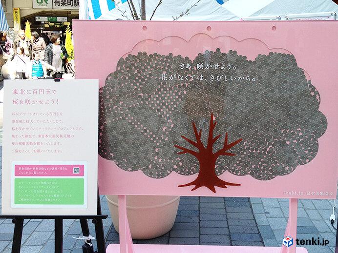 春を報(しら)せる百円桜プロジェクト 東日本大震災から10年 桜の生長と共に振り返る