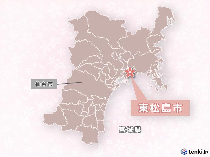 宮城県東松島市に30本の桜を植樹 「桜ライン311」などにも参加