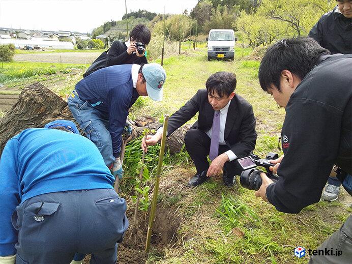 東松島市での植樹のようす(2012年5月4日撮影)
