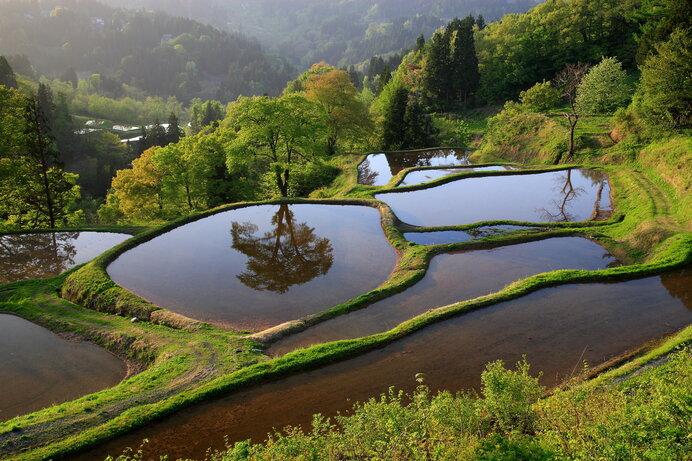 二千年の昔から先祖たちが開墾してきた水田。それは国土そのものを作る営みでした